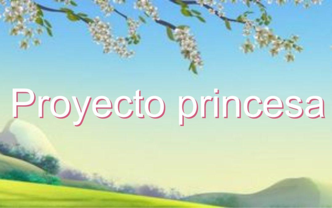 Proyecto habitación de princesa